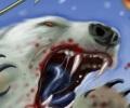נקמתו של דוב הקוטב