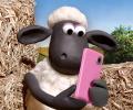 שון כבשון: ראש טלפון